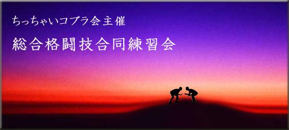 Yun_6572jpg